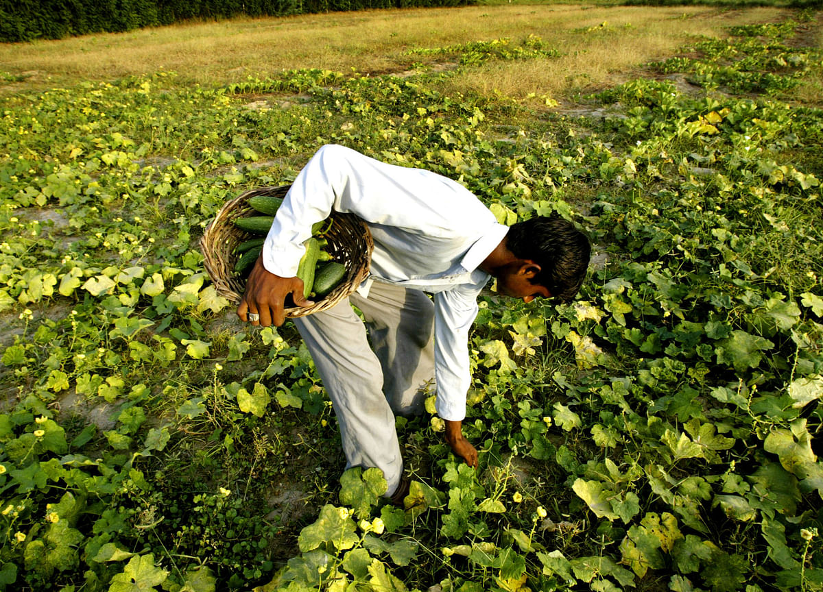 With New Maharashtra Offer, Farm Loan Write-Offs Touch Rs 4.7 Lakh Crore In Last 10 Years