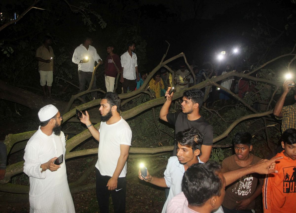 Cutting 2,700 Trees for Mumbai Metro Project Ignites Protests