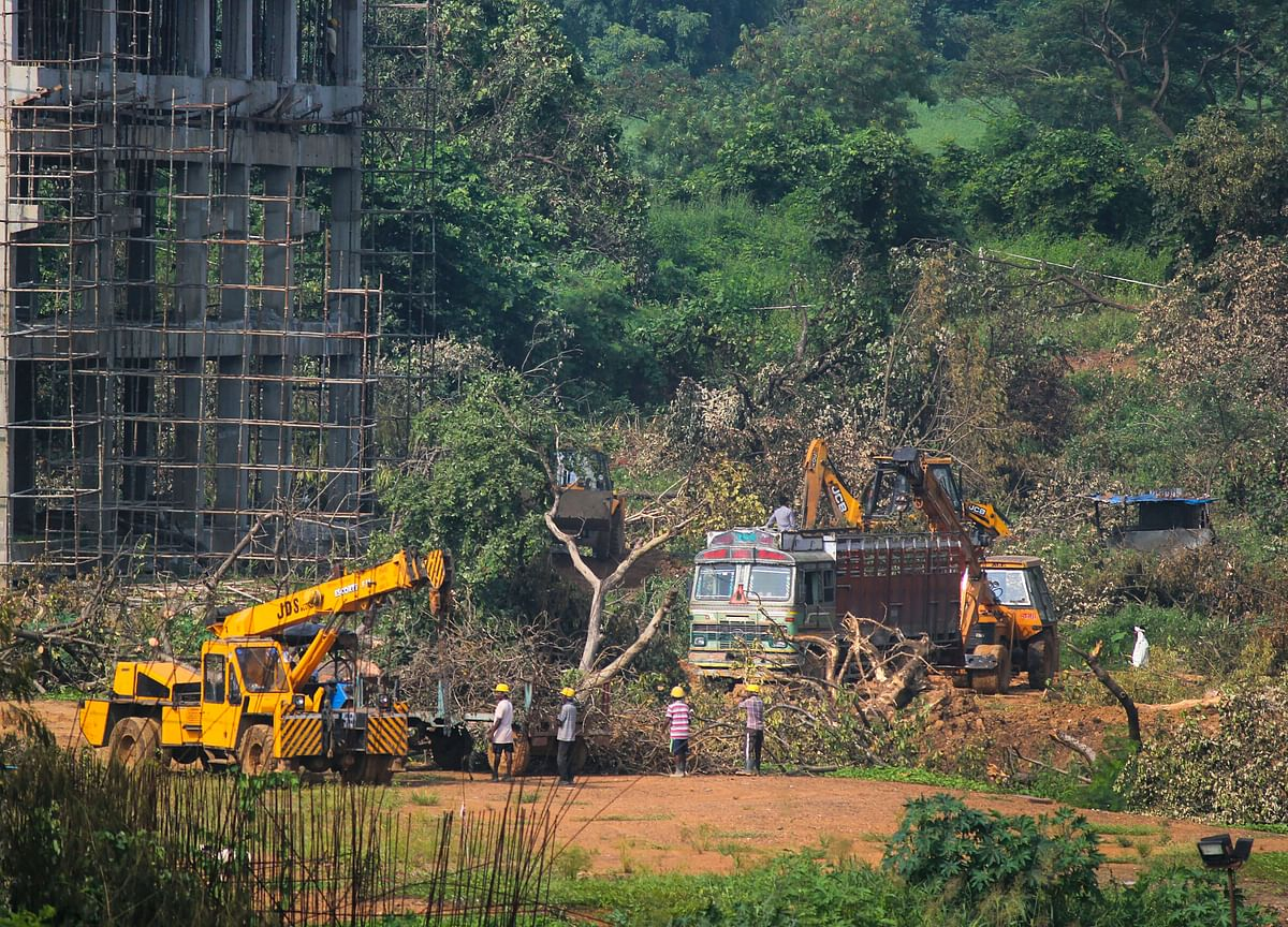 Supreme Court Extends Ban On Felling Trees In Mumbai's Aarey Colony For Metro Car Shed Project