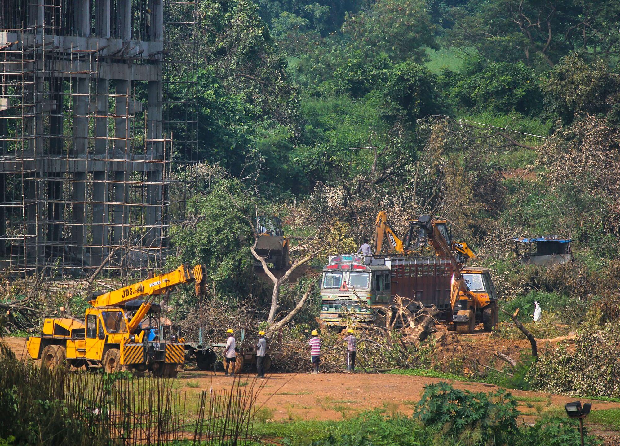 Maharashtra Removes Mumbai Metro Managing Director Amid Aarey Tree Felling Controversy