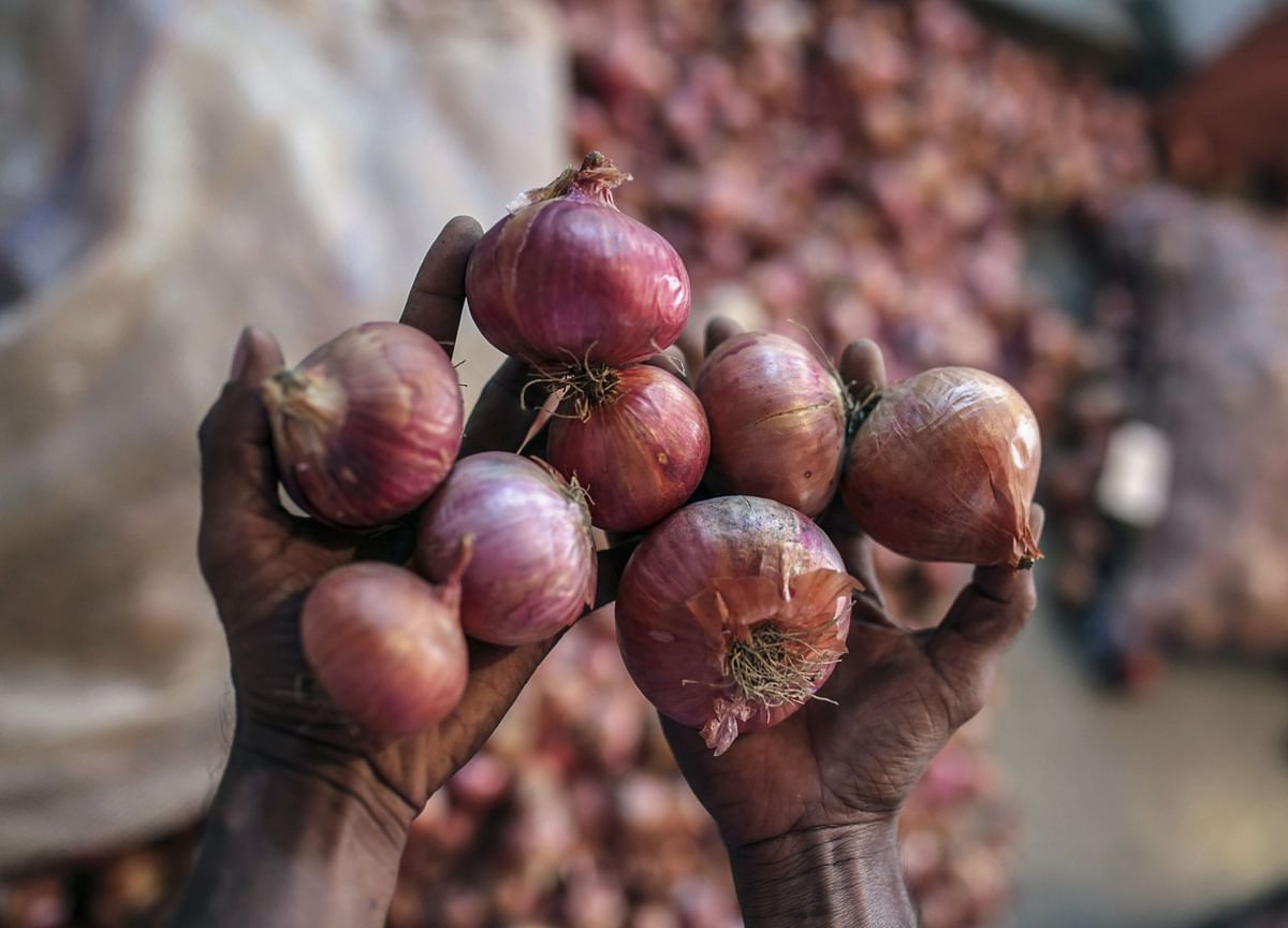 Onion Prices Remain High Across Major Cities Averaging Rs 100/Kg