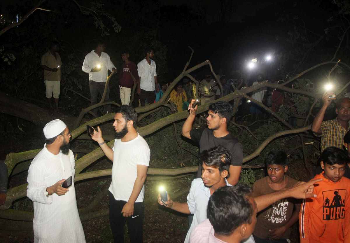 People enter in to the metro car shed on the spot during tree cutting. (Photo: PTI)