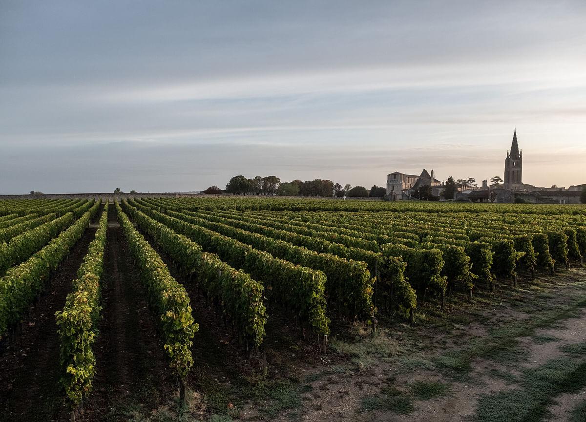 European Vineyards, Cheesemakers React to Blow From U.S. Tariffs