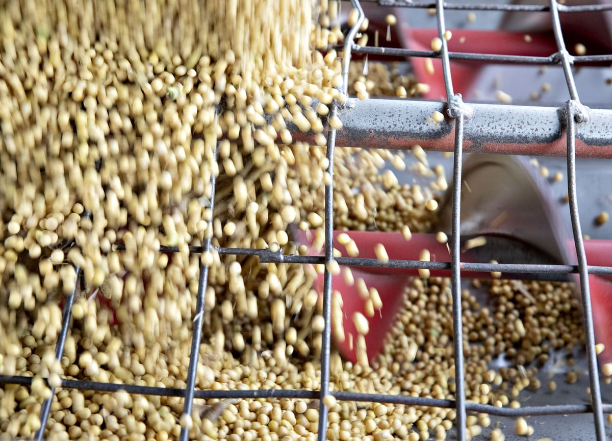 China's Imports of U.S. Soybeans Drop to 3-Month Low in October
