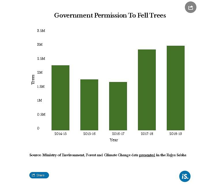 How India Managed Its Forests, Water And Waste In 2019
