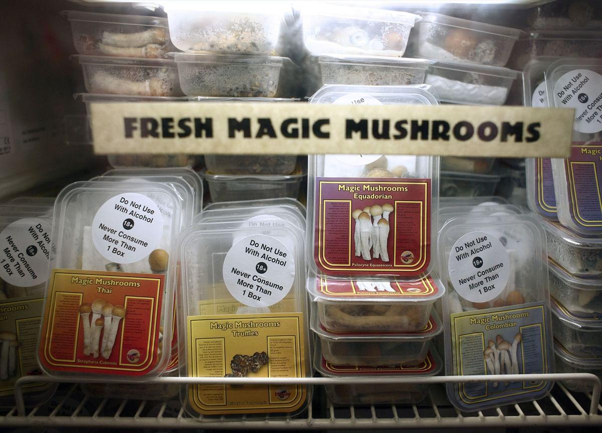Magic Mushrooms Pass First Hurdle as Depression Treatment