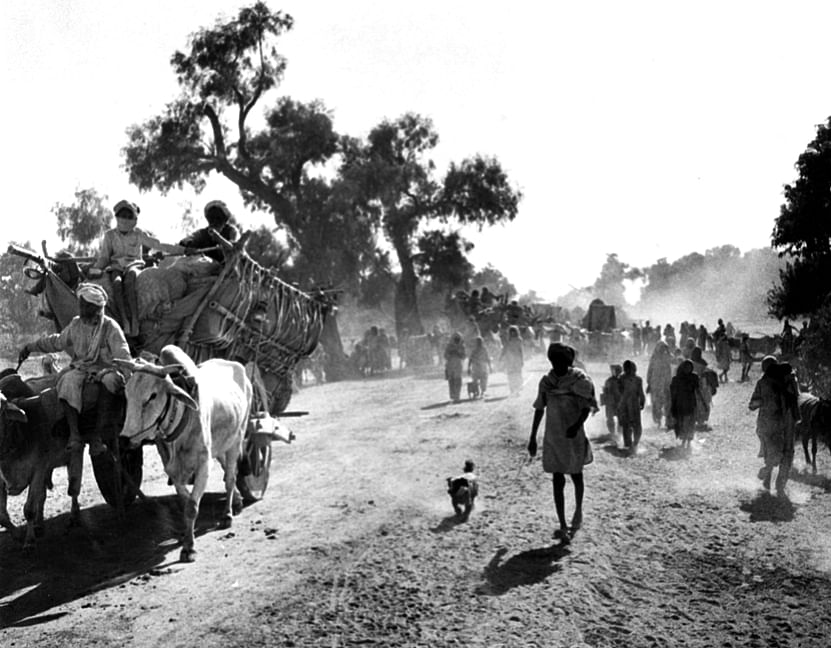A convoy of evacuees in Balloki, Kasur district, undivided Punjab. (Photograph: Photo Division/Government of India)