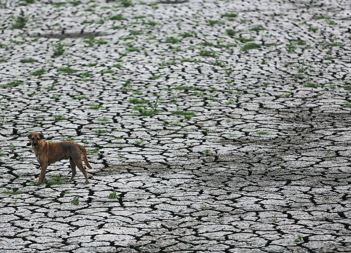 For Indian Stocks, Dry Spell Continues For A Second Straight Year