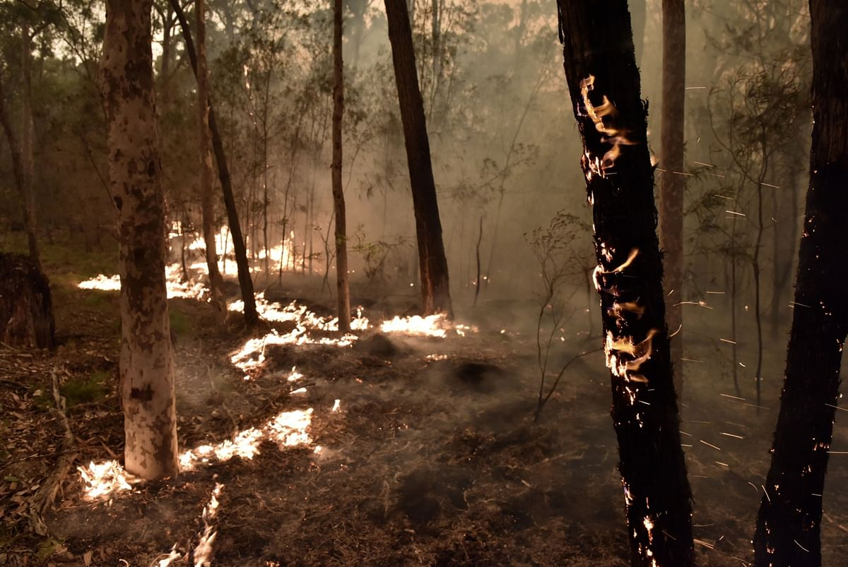 Fire burns in bush land in Batemans Bay, New South Wales, Australia. (Photographer: Mark Graham/Bloomberg)