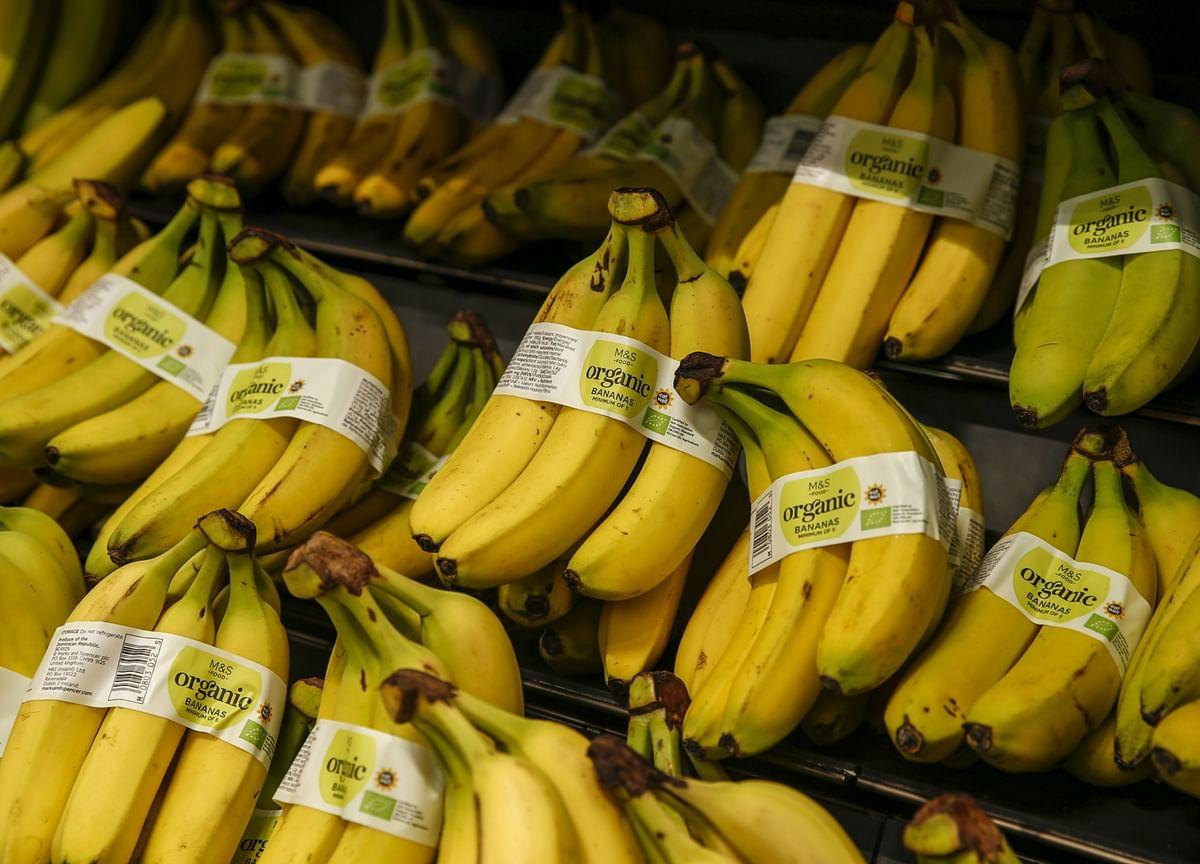 India's Organic Food Market Is Growing At 17% Annually, Says Harsimrat Kaur Badal