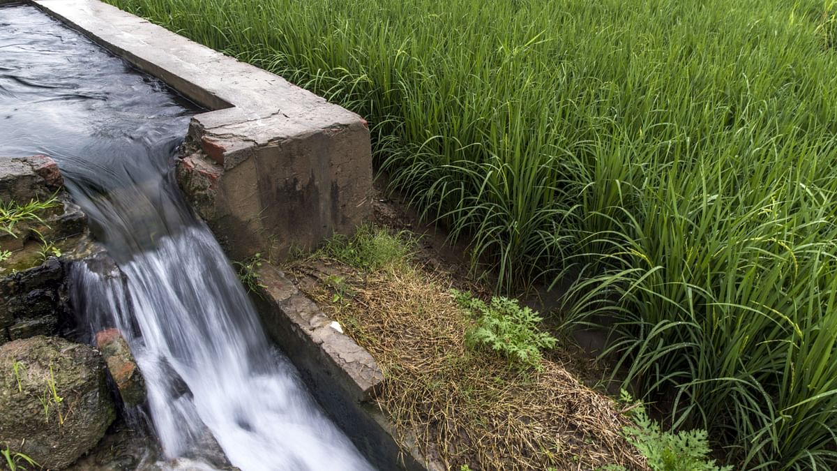 Jain Irrigation's Restructuring Plan Nears Approval From Banks