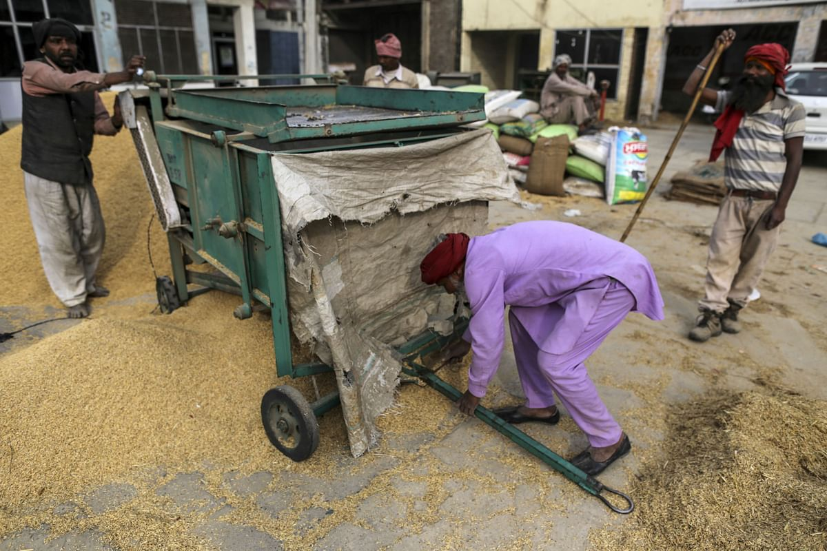 Farmers clean rice paddy at an Agricultural Produce Market Committee wholesale market in Jalandhar, Punjab on Saturday, Jan. 21, 2017. Photographer: Dhiraj Singh/Bloomberg