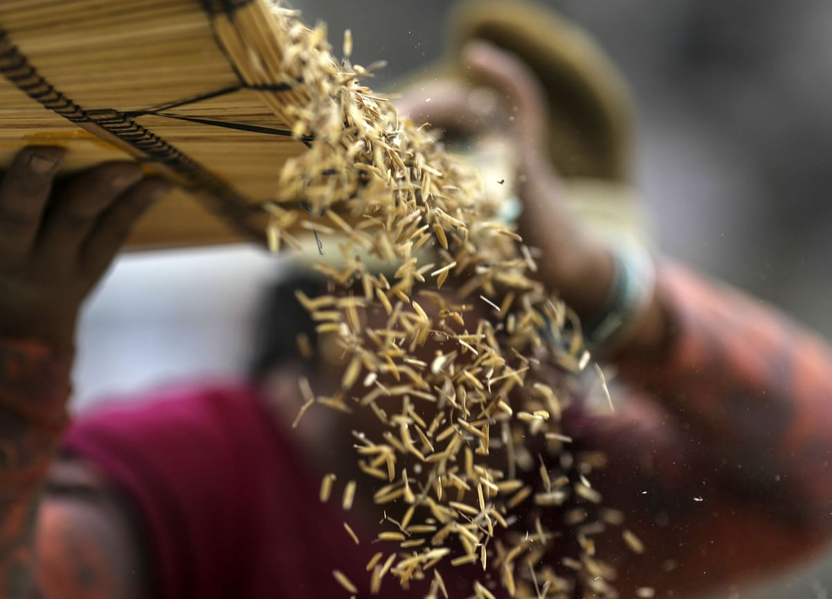 India's Foodgrain Output To Rise 2% In 2020-21: Government