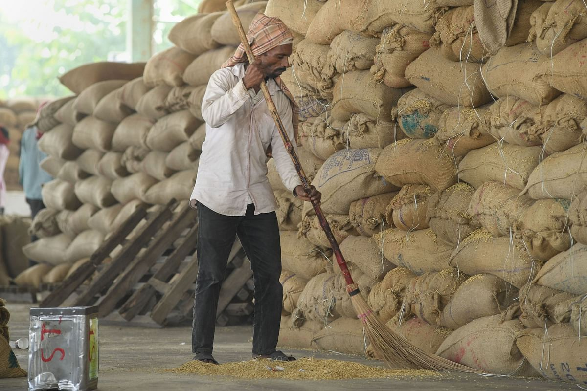 A worker sweeps near a pile of sacks of newly-harvested paddy grain, in Ambala, on Oct. 5, 2019. (Photograph: PTI)
