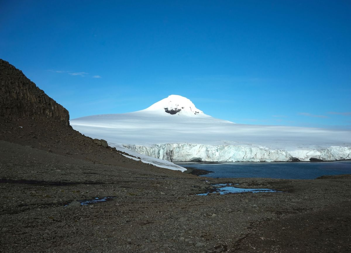 It's Official: Antarctica Used to Have a Rainforest