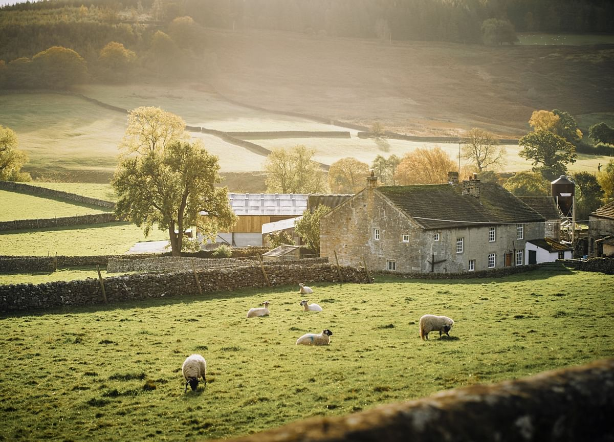 U.K. Realtors See Surging Demand for Green Space in Housing