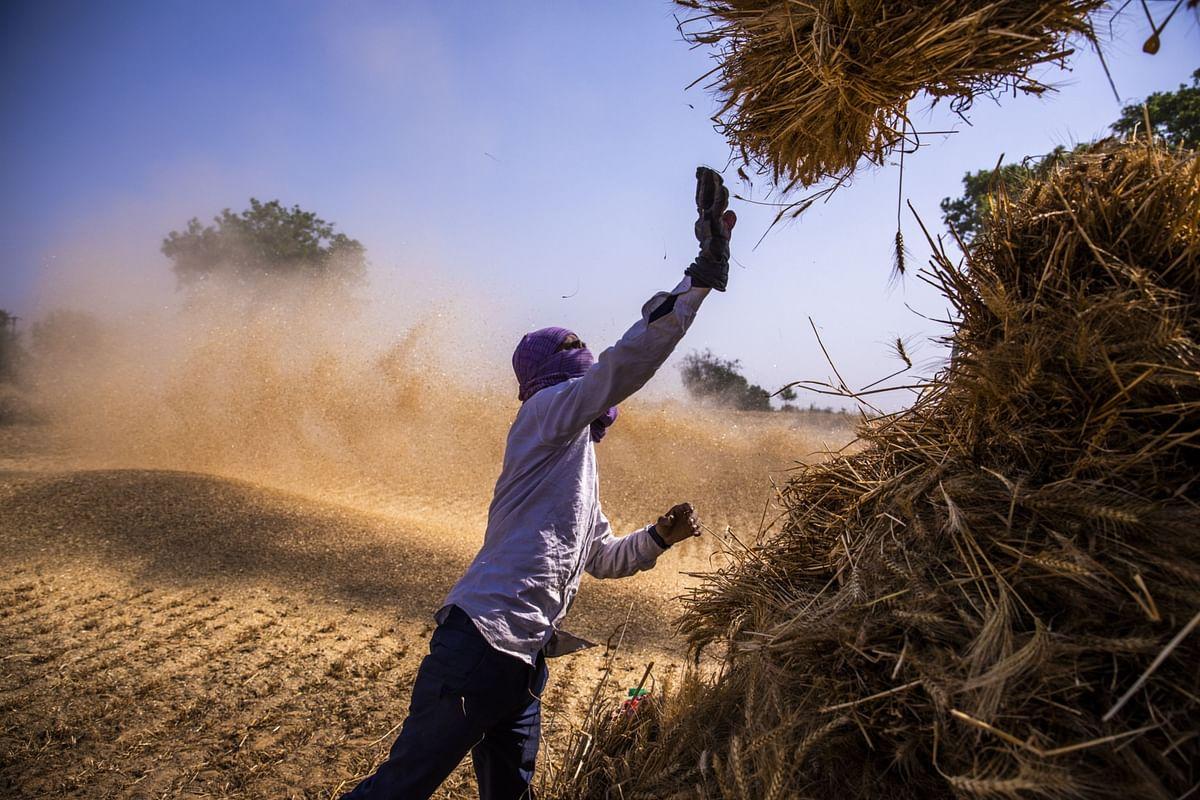 Modi, Migrants andMonsoon Make Rural India Top Consumer Equity Bet