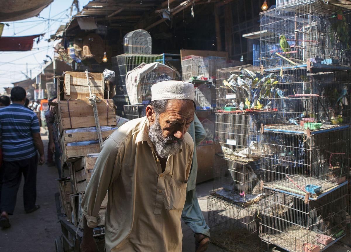 Google Maps Rival Helping Pakistan Find Virus Hotspots Plans IPO