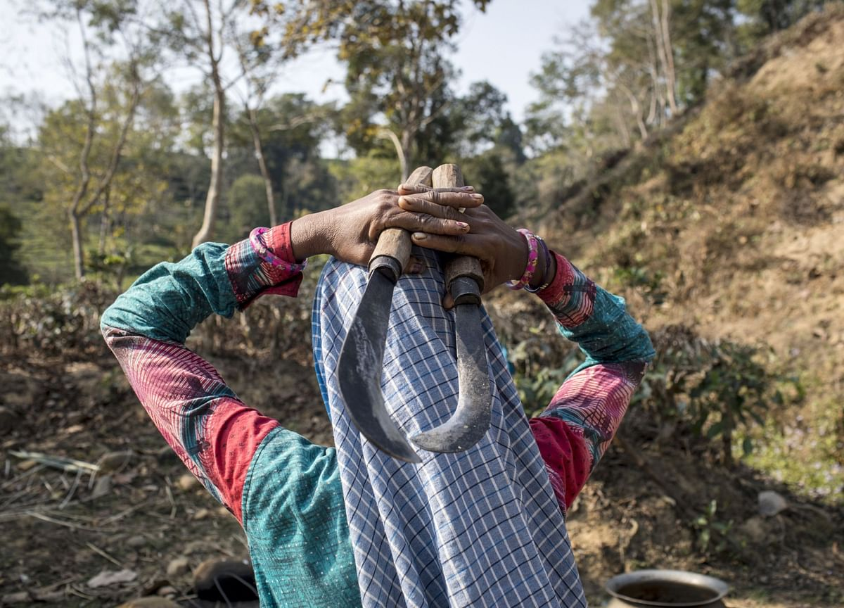 Signs Of Microfinance Stress Emerging In Three Indian States