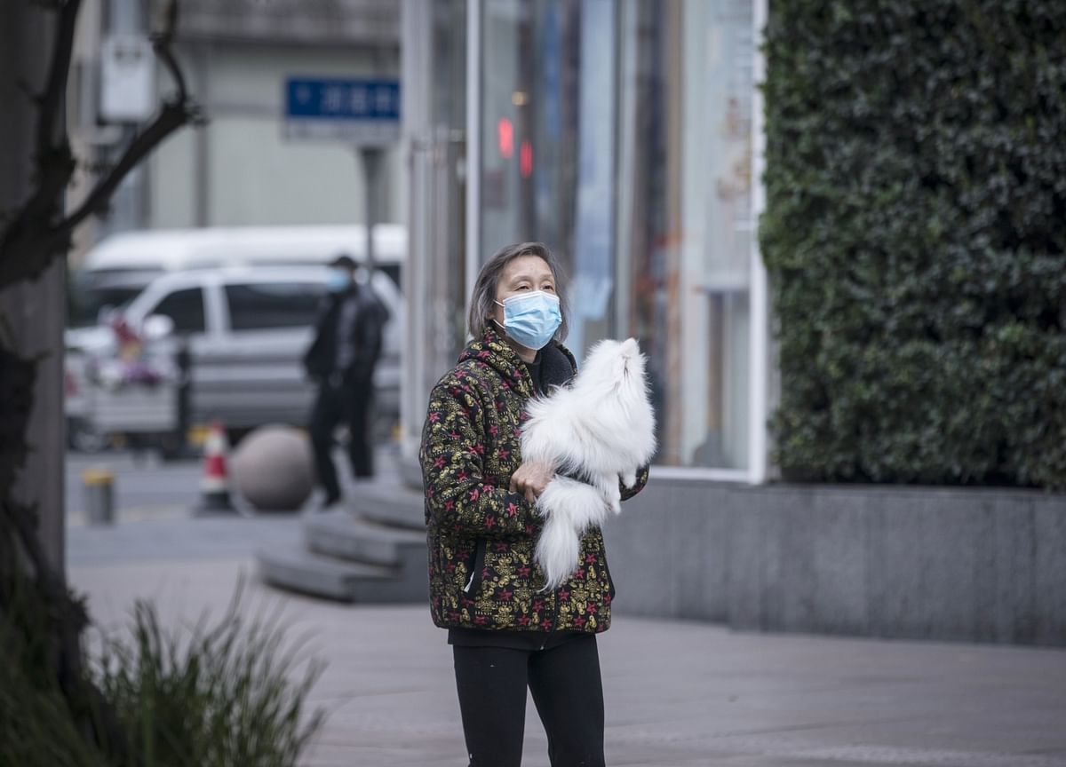Why Our Pets Have Become Super Needy During the Pandemic