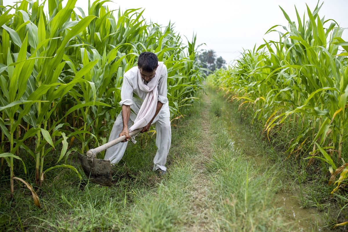 Farm Bills Need Of 21st Century, Mandis And MSP Will Stay: PM Modi