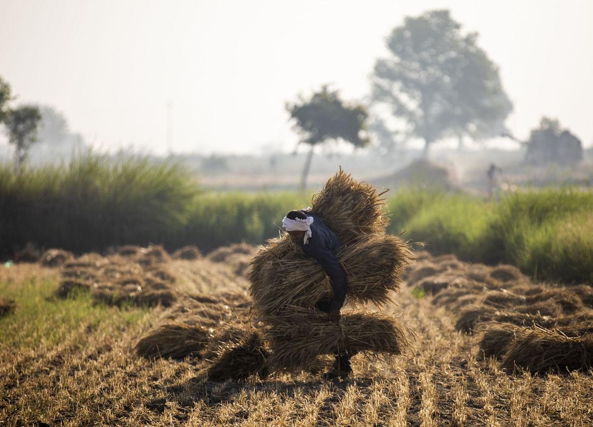 Farmers Protests Updates | Punjab, Haryana Farmers Hit The Roads; Police Deployed At Delhi Borders