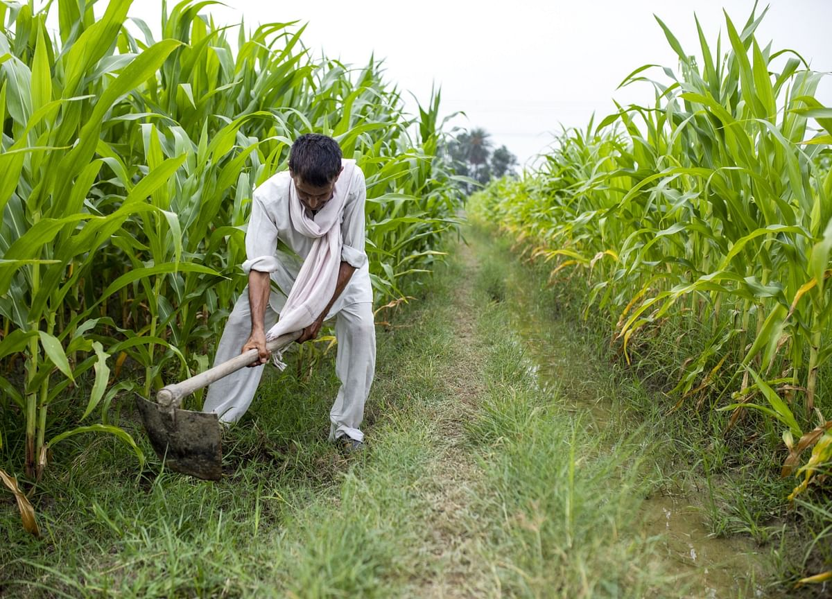 Farm Reforms: Green Revolution II Needs Kisan Camps