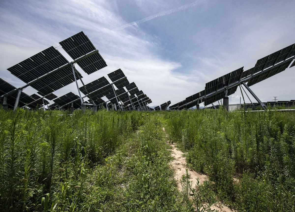 Green Power to Draw $11 Trillion Investment by 2050: BNEF