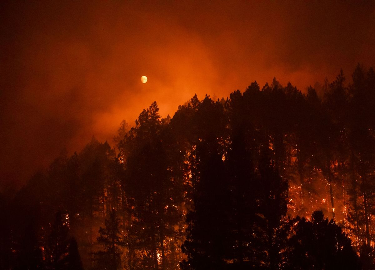 Counting the Cost of Wildfires on U.S. Economic Growth