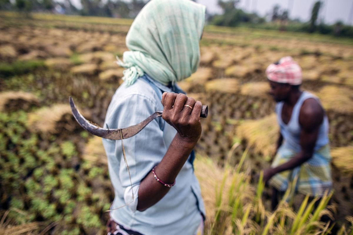 SBI Research: Agriculture Reforms Politics