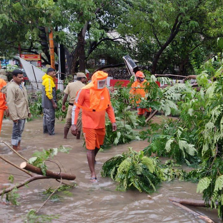 Four Killed Due To Nivar Cyclone In Tamil Nadu; Centre, State Announce Relief