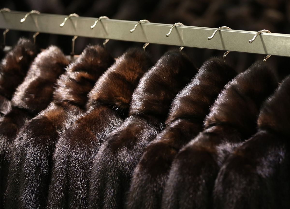Mutant Virus in Mink Raises Doubts About the Future of Fur