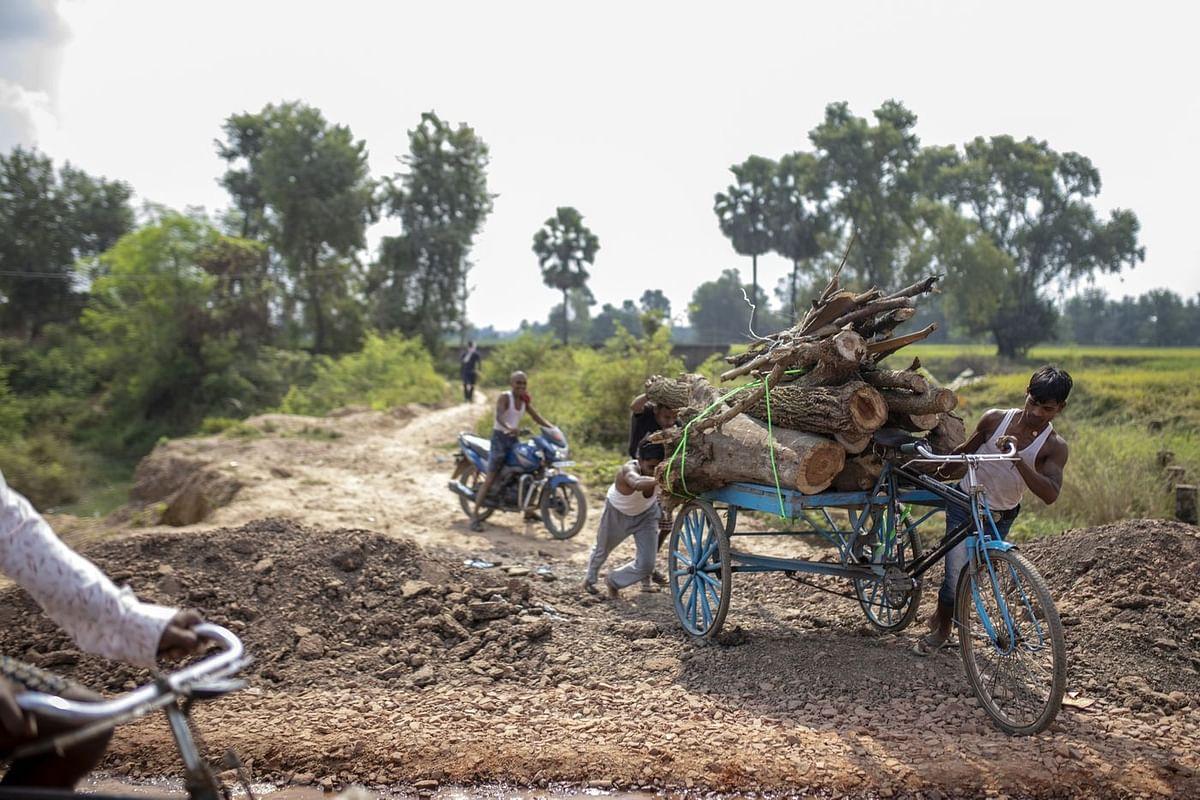 Gaya district, Bihar, October. (Photo: Prashanth Vishwanathan/Bloomberg)