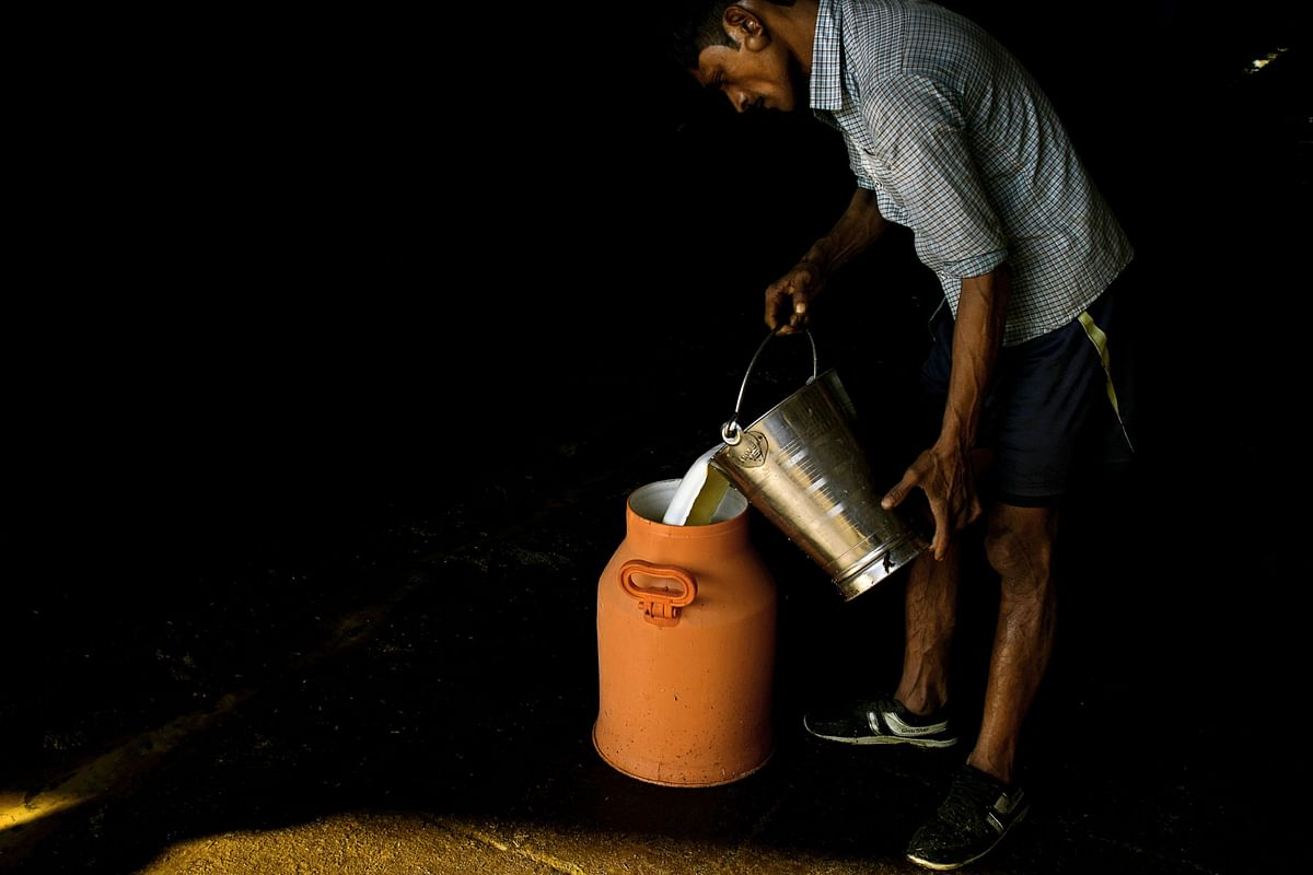A worker pours a bucket of milk into a storage can. (Photographer: Anindito Mukherjee/Bloomberg)