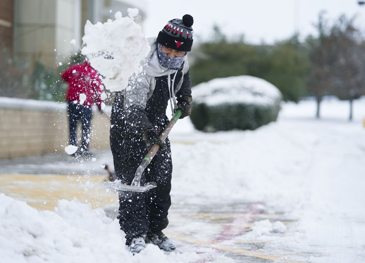 Frozen Texans Rely on Wits and Dogs to Find Water and Warmth