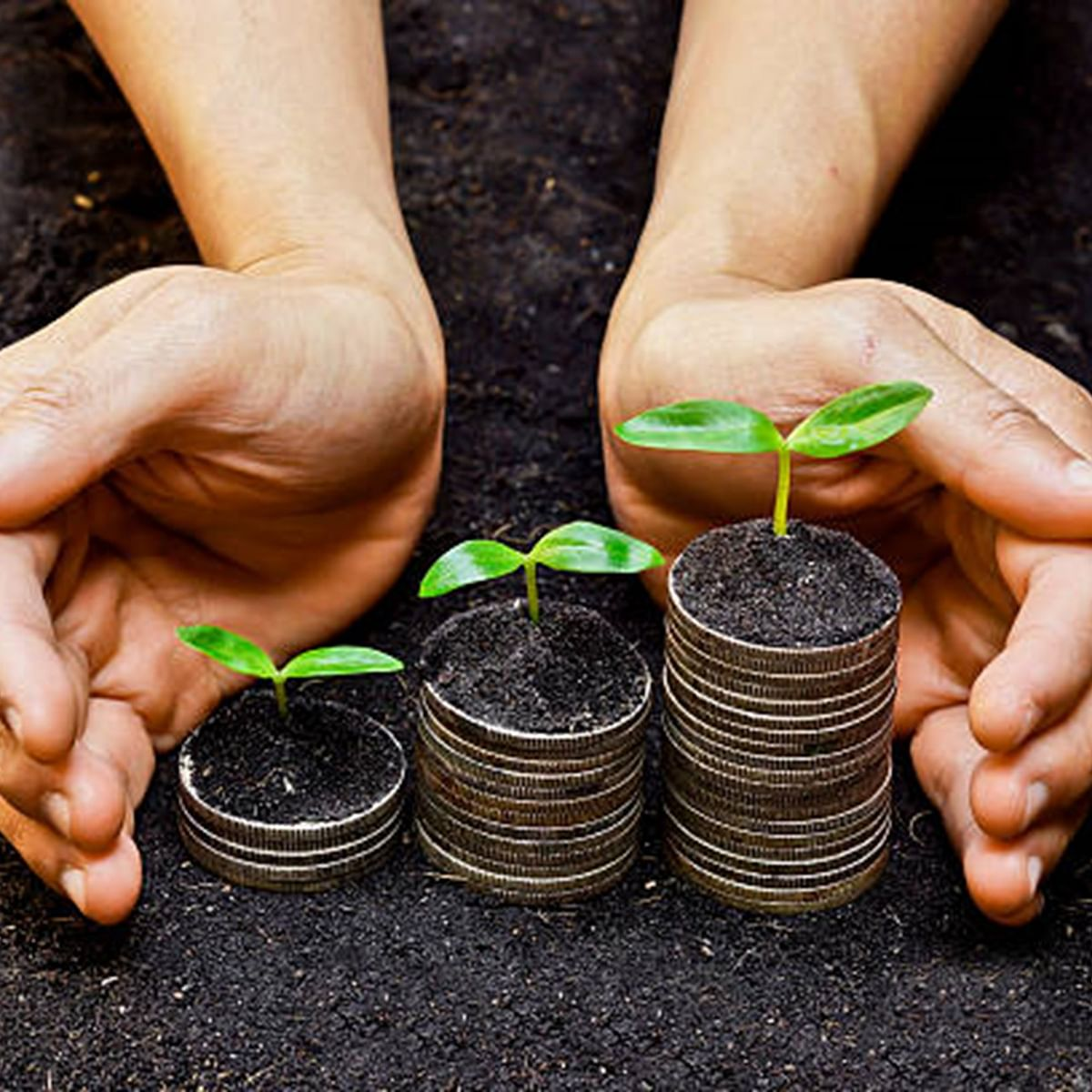 Investing In ESG Mutual Funds Is The Future of Investing