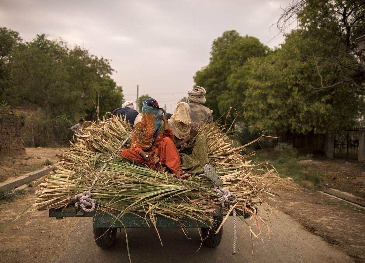 Rural Stocks Struggle on Covid, Rain Woe in India Hinterland