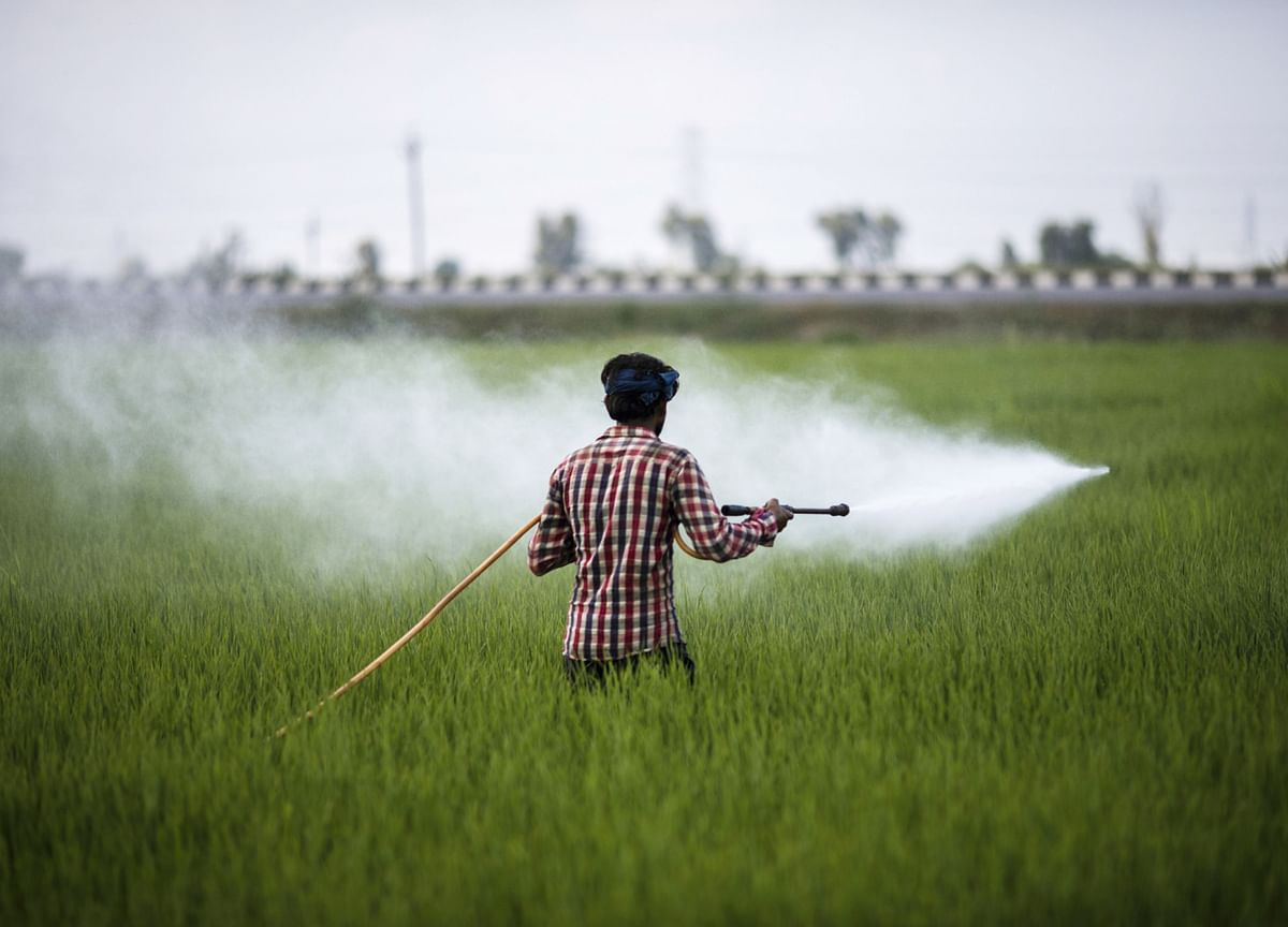 India Pesticides IPO Fully Subscribed On Day 1