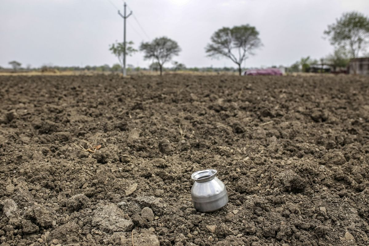 Monsoon-Sown Crop Area in India Drops 12% Amid Delayed Rains