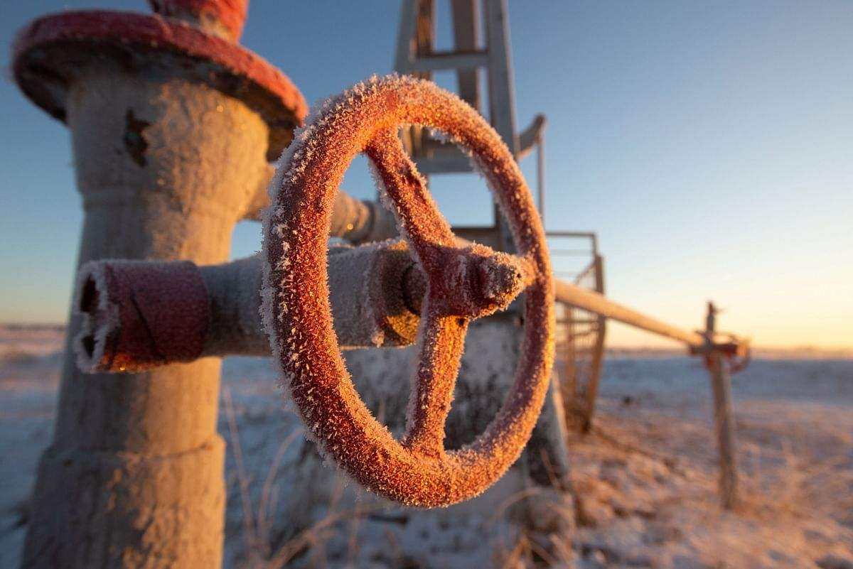 Oil Leads Market Plunge as Virus Rattles Faith in Recovery