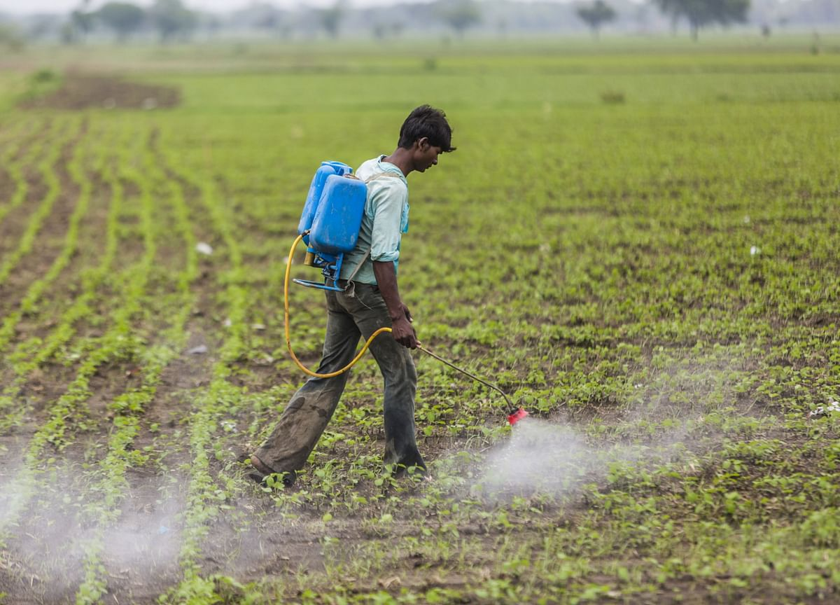 Agro Chemicals Q1 Earnings Preview - Sector Valuations Price In A Good Season: Prabhudas Lilladher