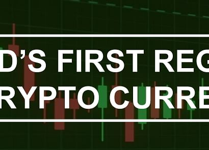 Why Every Investor Should Consider PNP Coin, The Less-Volatile, Regulated Cryptocurrency
