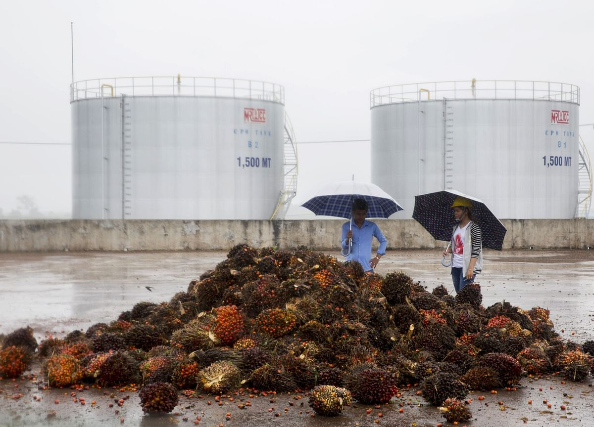 Patchy India Rain Set to Cheer Palm Traders 3,000 Miles Away