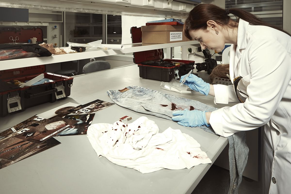 A forensic scientist examines bloodstain evidence.