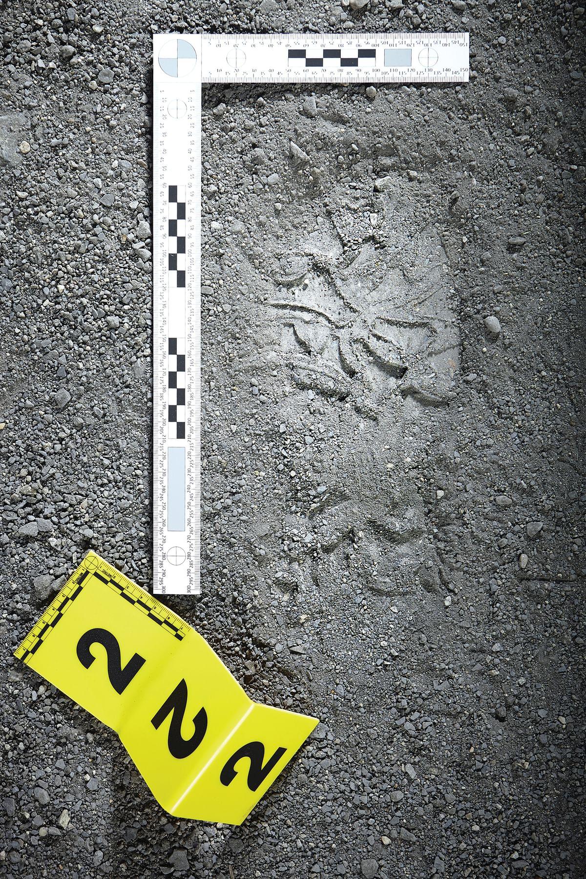 Crime scene investigation - footprint of criminal