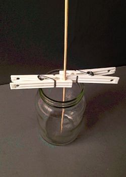 Skewer held with clothespins 1cm above the bottom of glass container.