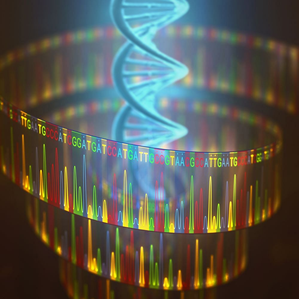 The Genome Age: Exploring Human Variation and Evolution