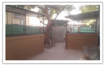 Composting pits in a residential complex in Pune