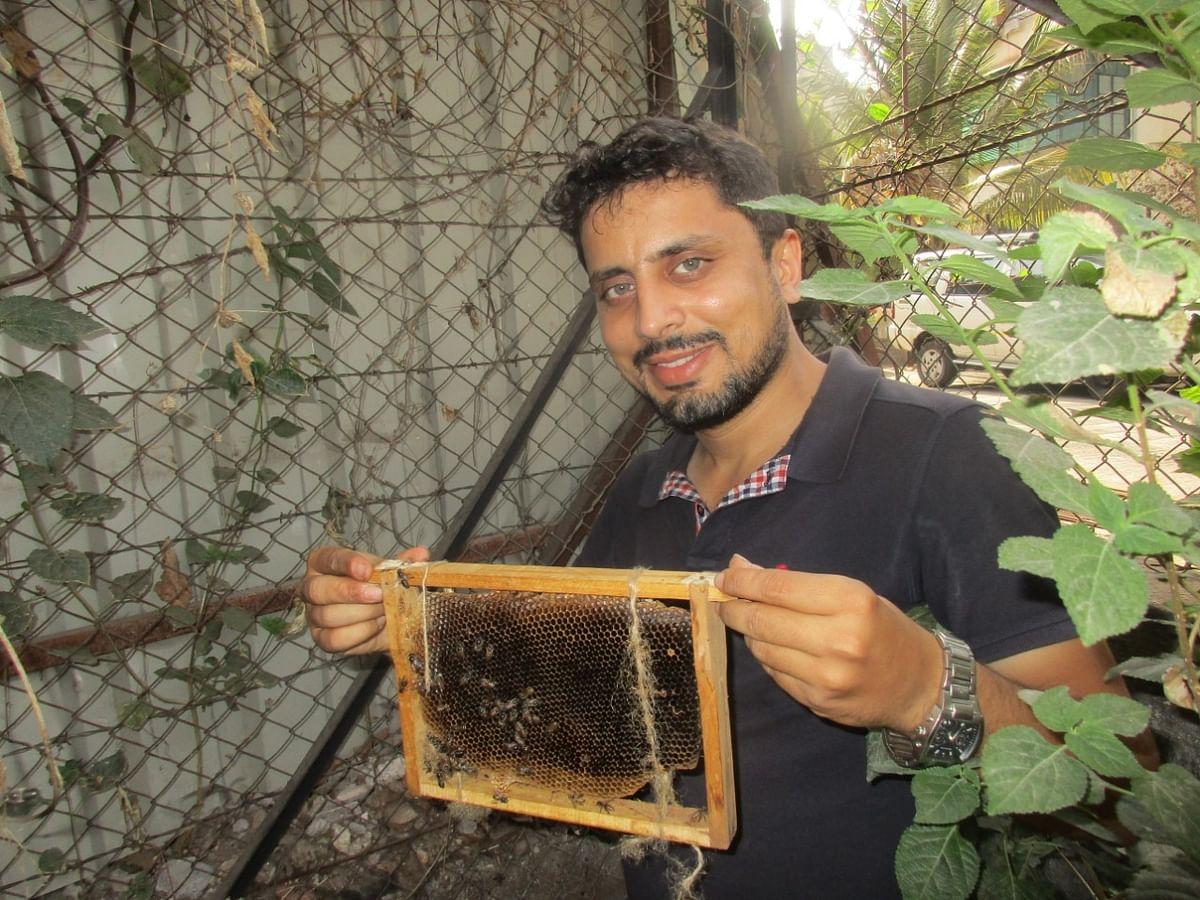 Displaying an apiary panel Amit Godse