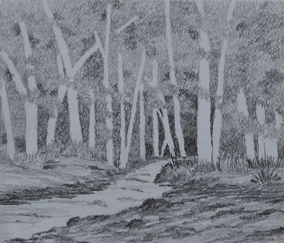 Brook and Woods  - pencil sketch by Milind Soman